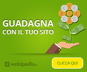 Webipedia guadagna con un sito web