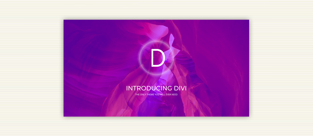 temi wordpress per ecommerce: Divi