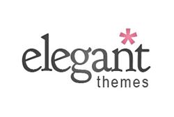 Temi WordPress: Elegant Theme