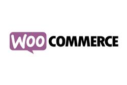 Temi WordPress: Woocommerce