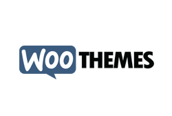 Temi WordPress: Woo Theme