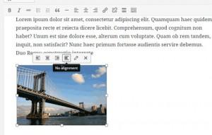 wordpress-4.1-editor-inline