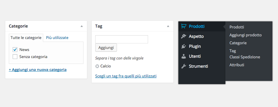 categorie tag wordpress