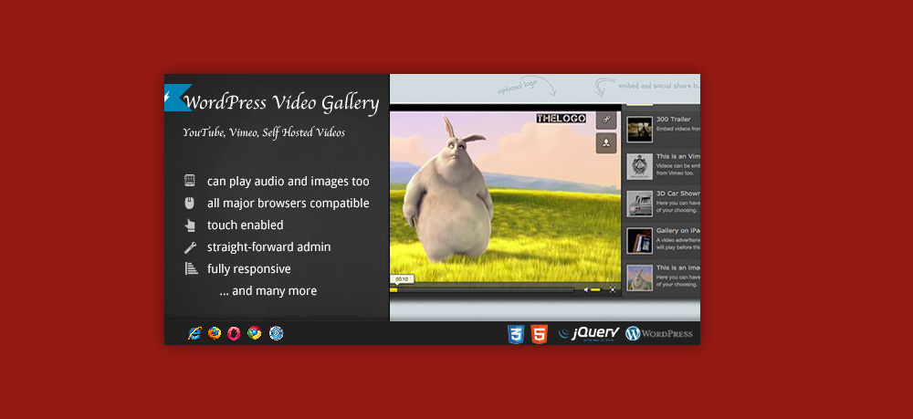 Wordpress video gallery: WordPress Video Gallery