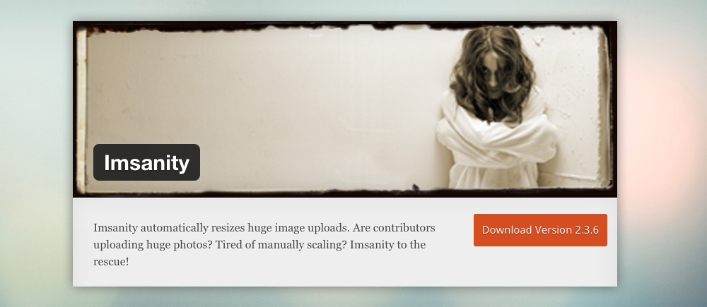 Come ottimizzare immagini wordpress: Imsanity