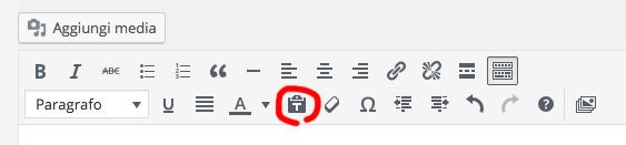 editor-wordpress-solo-testo-icona