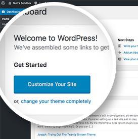 WordPress 4.6 - Font