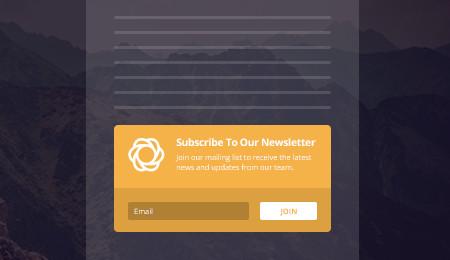 Bloom email optin: below