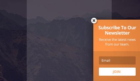 Bloom email optin: flyin