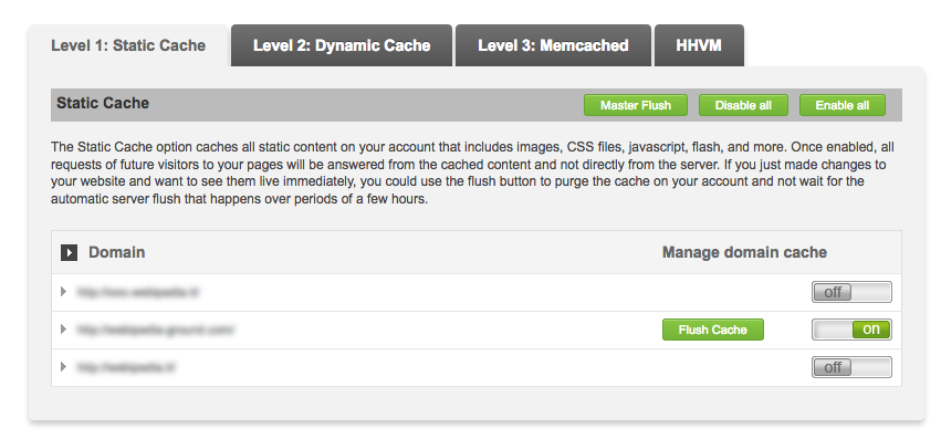 level 1 static cache