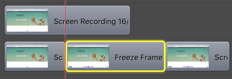 screenflow freeze frame