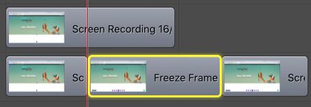 screenflow freeze frame